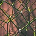 Nieuw Organiseren Blog Werkt de decentralisatie?